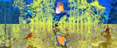zauberwald-2.jpg