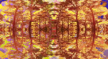 baeume-wie-glas-12.jpg