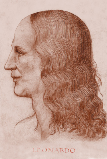 2-leonardo-face-reconstruction-inscription.jpg
