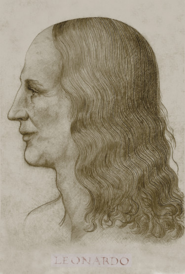 5-leonardo-face-reconstruction-inscription-brown.jpg